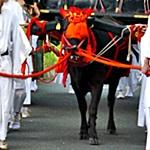京都 葵祭 2015