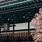 京都御所 一般公開 混雑