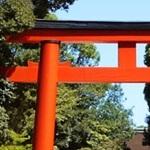 京都 下鴨神社 式年遷宮
