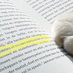 読書感想文 書き方