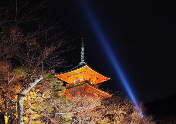 京都 東山 ライトアップ