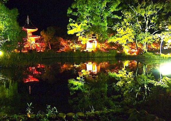 京都 月見  大覚寺 大沢池