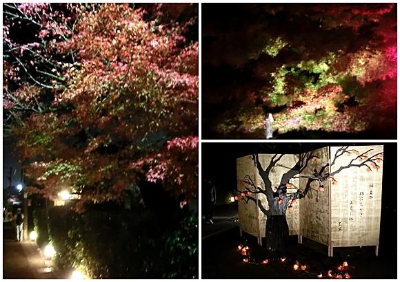 嵐山 花灯路 紅葉