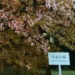 京都御所 見学 申し込み