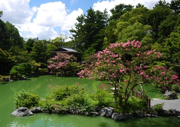 京都御所 周辺 観光