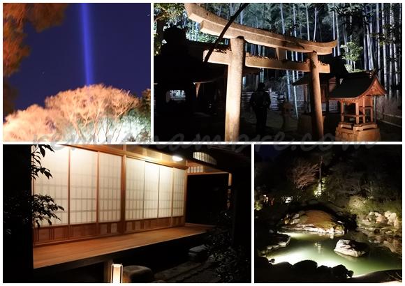 京都 青蓮院門跡 ライトアップ