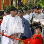 京都 葵祭 見どころ